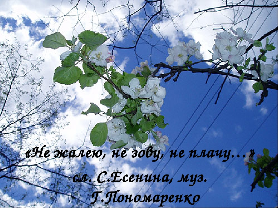 «Не жалею, не зову, не плачу…» сл. С.Есенина, муз. Г.Пономаренко