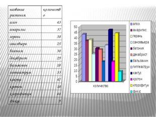 название растения количество алоэ 43 амарилис 37 герань 38 сансевьера 25 бего