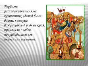 Первыми распространителями комнатных цветов были воины, которые, возвращаясь