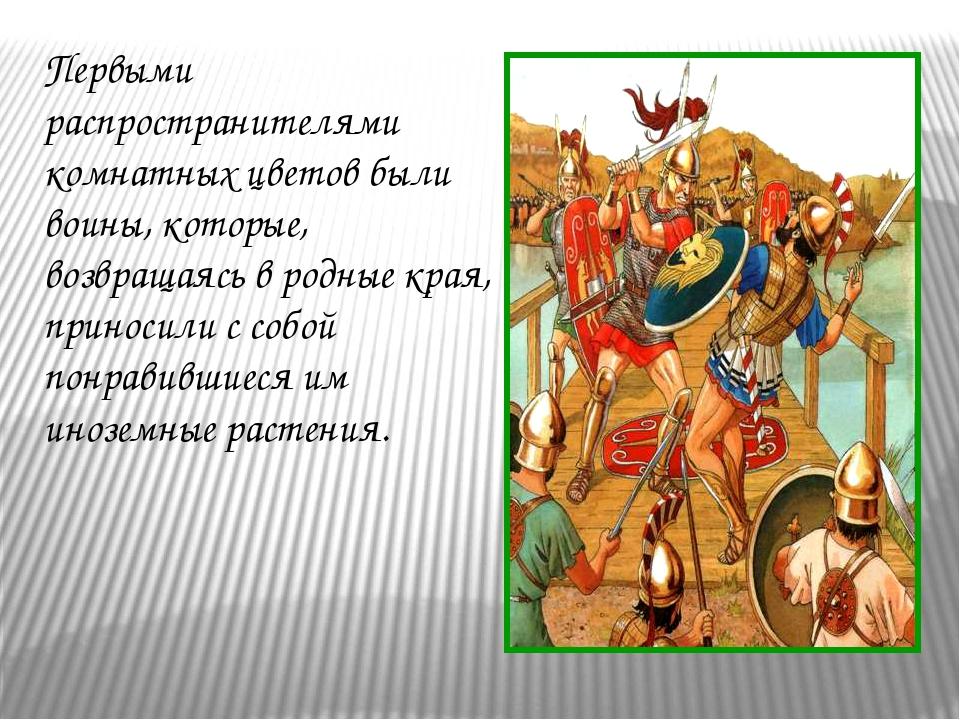 Первыми распространителями комнатных цветов были воины, которые, возвращаясь...