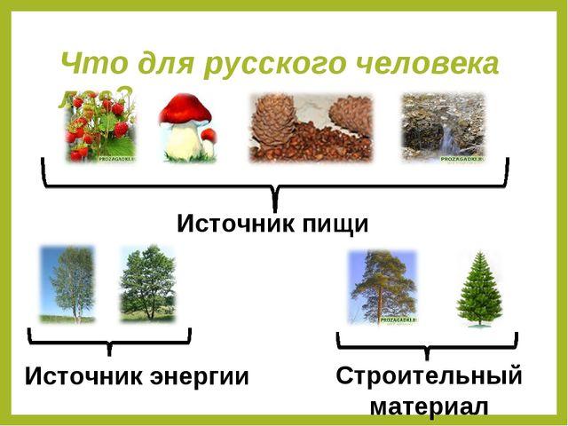 Что для русского человека лес? Источник пищи Строительный материал Источник э...