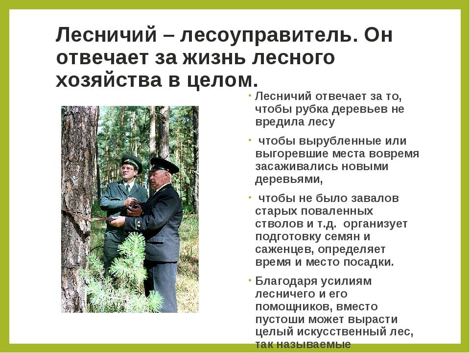 Лесничий – лесоуправитель. Он отвечает за жизнь лесного хозяйства в целом. Ле...