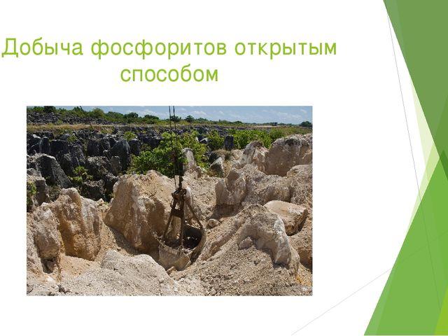 Добыча фосфоритов открытым способом