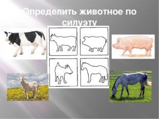 Определить животное по силуэту