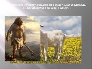 Понравилось человеку жить рядом с животными, и однажды он сам привел в дом ко