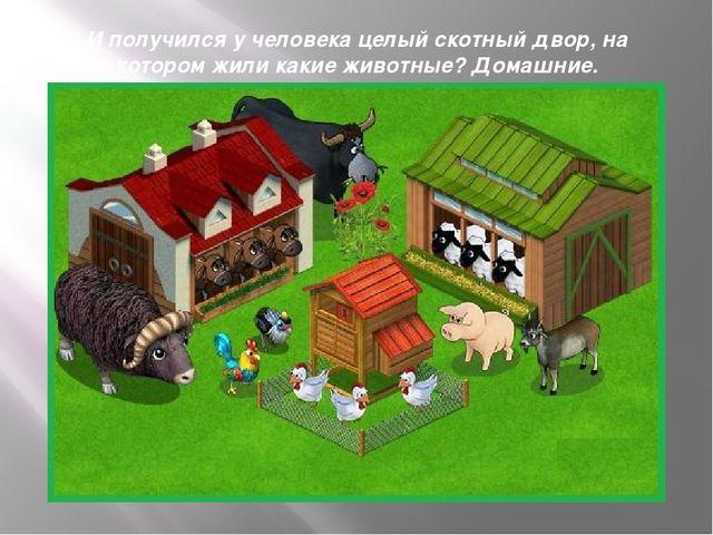 И получился у человека целый скотный двор, на котором жили какие животные? До...