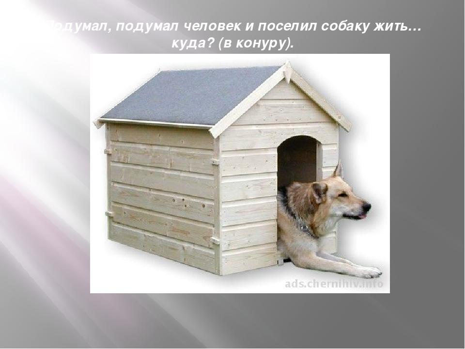 Подумал, подумал человек и поселил собаку жить… куда? (в конуру).