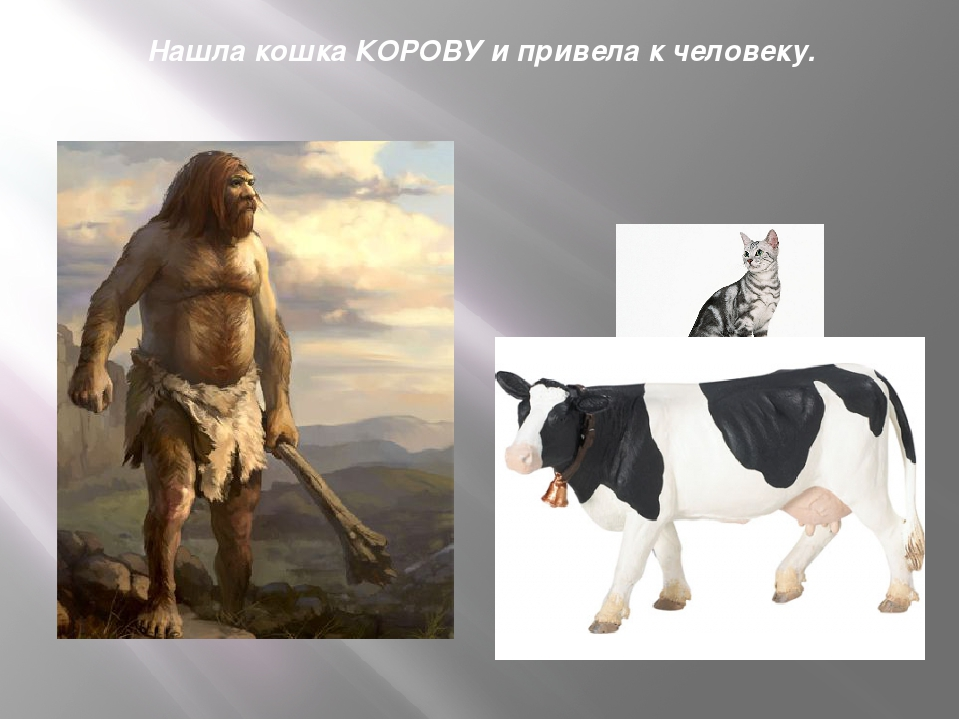 Нашла кошка КОРОВУ и привела к человеку.