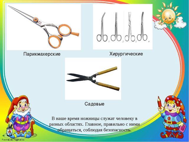 В наше время ножницы служат человеку в разных областях. Главное, правильно с...