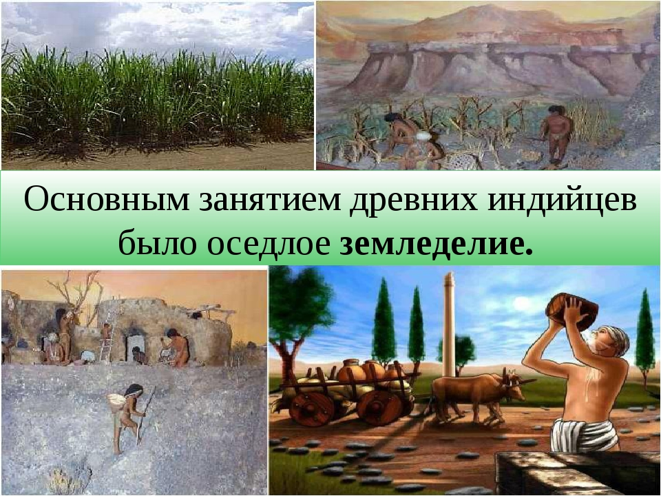 Основным занятием древних индийцев было оседлое земледелие.