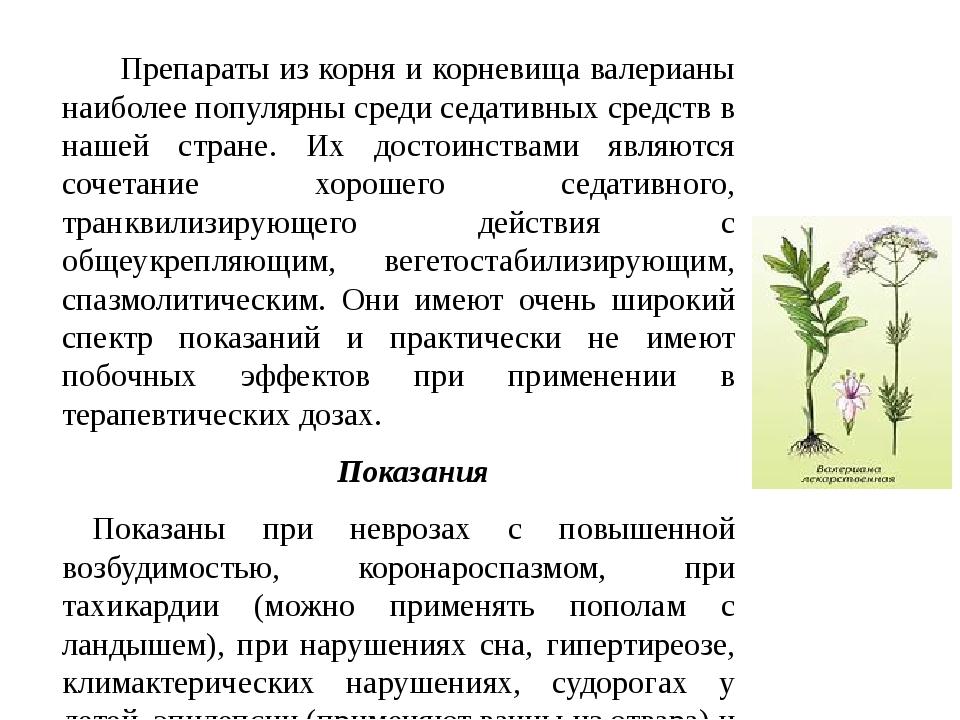 Препараты из корня и корневища валерианы наиболее популярны среди седативных...
