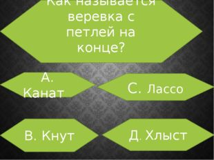 Как называется веревка с петлей на конце? А. Канат В. Кнут С. Лассо Д. Хлыст