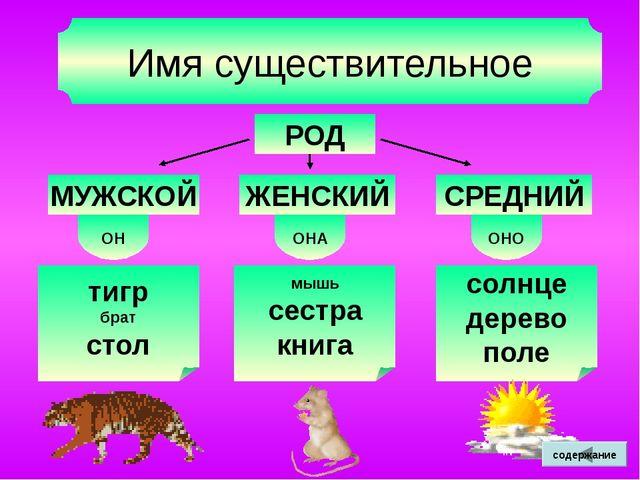 О после шипящих 4. В словах – исключениях (под ударением) шов, шорох, крыжовн...