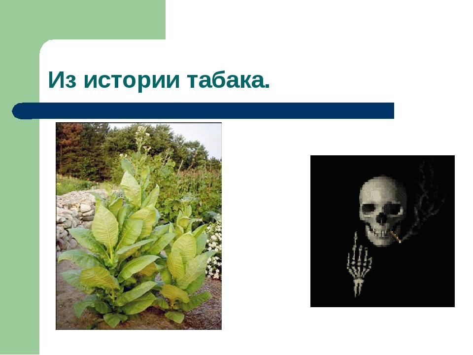 Из истории табака.