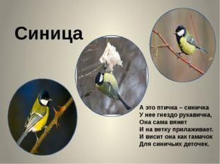 Синица А это птичка – синичка У нее гнездо рукавичка, Она сама вяжет И на ве