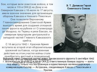 Бои, которые вели советские войска, в том числе и 110-я ОККД на Дону и на Сев