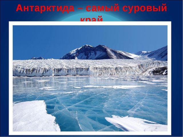 Антарктида – самый суровый край