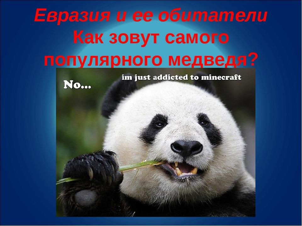 Евразия и ее обитатели Как зовут самого популярного медведя?