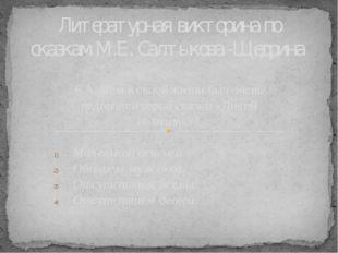 6 А. Чем в своей жизни был очень недоволен герой сказки «Дикий помещик»? Мале