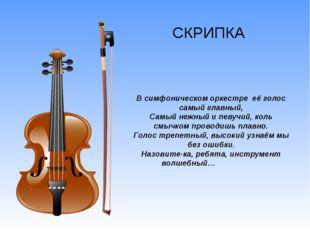 СКРИПКА  В симфоническом оркестре её голос самый главный, Самый нежный и пев