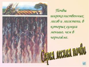 Почвы широколиственных лесов и лесостепи, в которых гумуса меньше, чем в чер