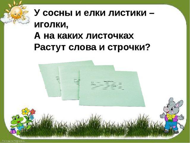У сосны и елки листики – иголки, А на каких листочках Растут слова и строчки?