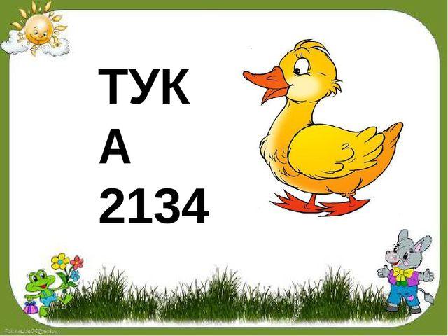 ТУКА 2134