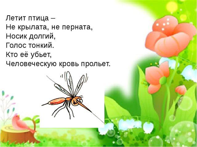 Летит птица – Не крылата, не перната, Носик долгий, Голос тонкий. Кто её убье...