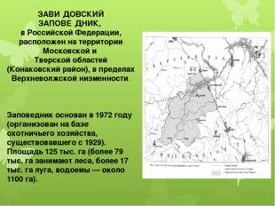 ЗАВИ́ДОВСКИЙ ЗАПОВЕ́ДНИК, в Российской Федерации, расположен на территории Мо