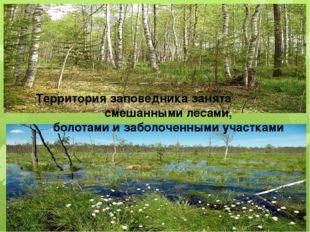 Территория заповедника занята смешанными лесами, болотами и заболоченными уч
