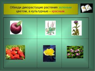 Обведи дикорастущие растения зеленым цветом, а культурные – красным.