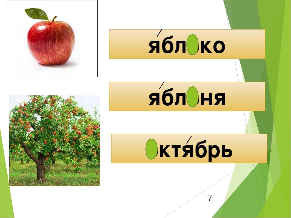 ещё картинки к слову яблоня купить как пользоваться