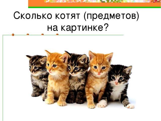 Сколько котят (предметов) на картинке?