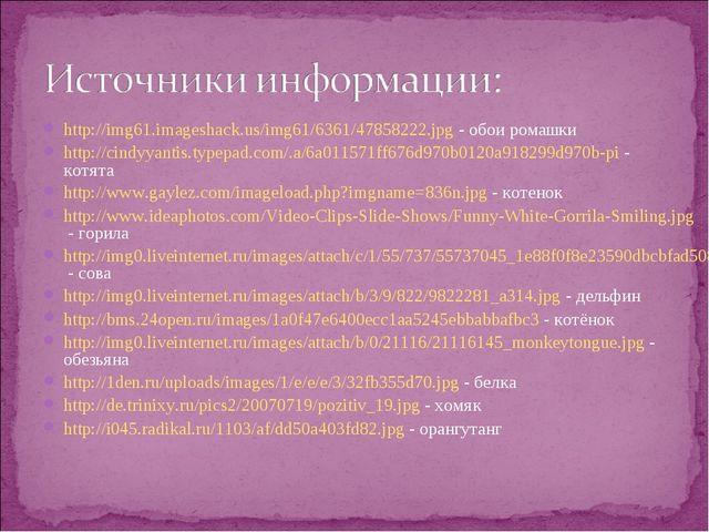 http://img61.imageshack.us/img61/6361/47858222.jpg - обои ромашки http://cind...