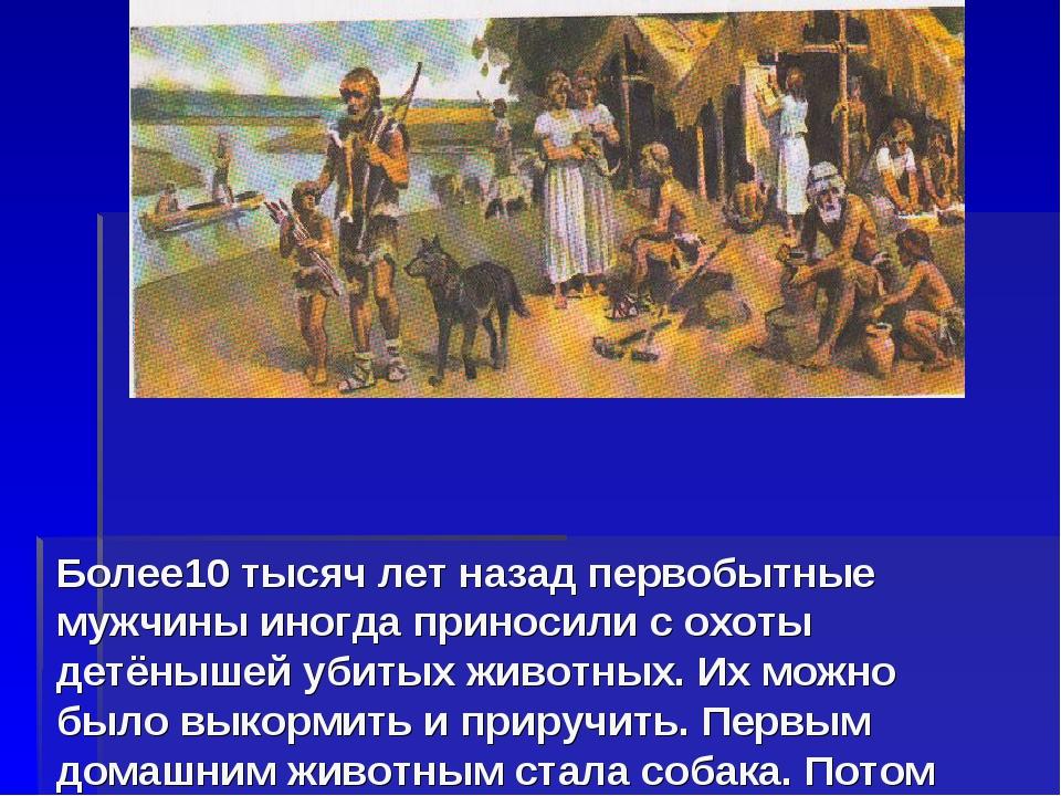 Более10 тысяч лет назад первобытные мужчины иногда приносили с охоты детёныше...