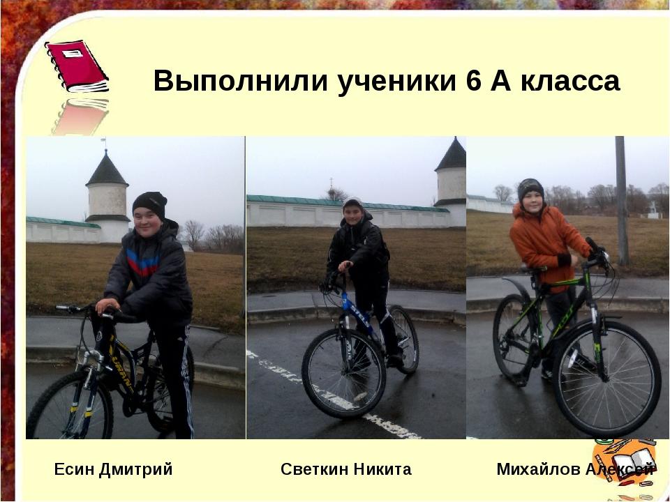 Выполнили ученики 6 А класса Есин Дмитрий Светкин Никита Михайлов Алексей