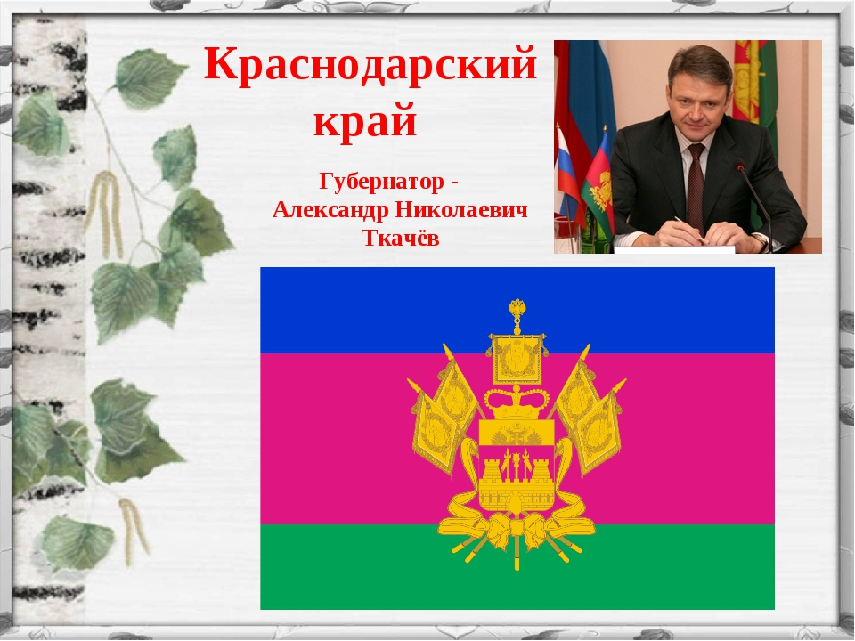 Губернатор - Александр Николаевич Ткачёв Краснодарский край
