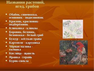 Названия растений, ягод, грибов Обабок, синеножка, осиновик - подосиновик Кра