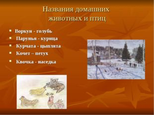 Названия домашних животных и птиц Воркун - голубь Парунья - курица Курчата -