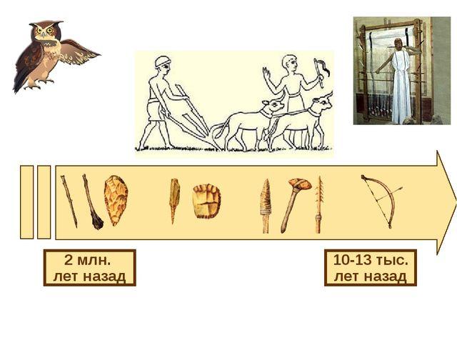 2 млн. лет назад 10-13 тыс. лет назад