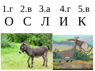 1.г 2.в 3.а 4.г 5.в О С Л И К