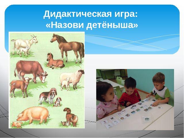 Дидактическая игра: «Назови детёныша»
