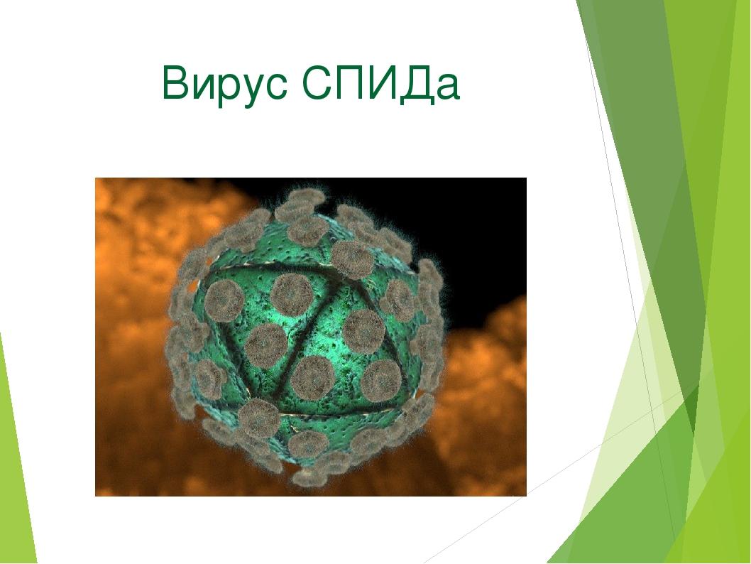 Вирус СПИДа