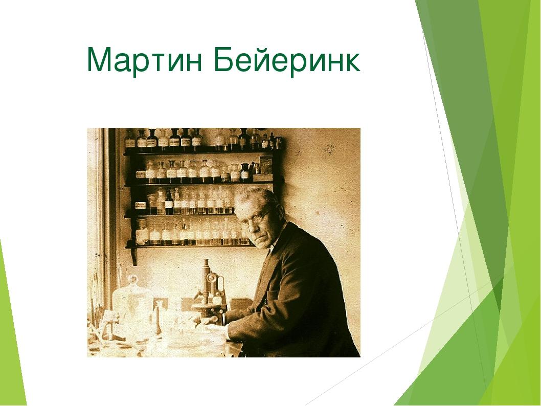 Мартин Бейеринк