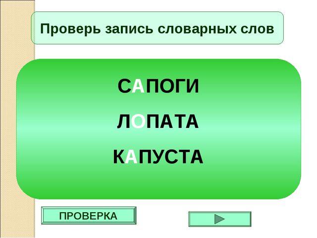 ПРОВЕРКА Проверь запись словарных слов САПОГИ ЛОПАТА КАПУСТА