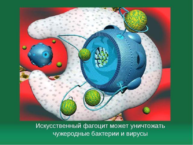 Искусственный фагоцит может уничтожать чужеродные бактерии и вирусы