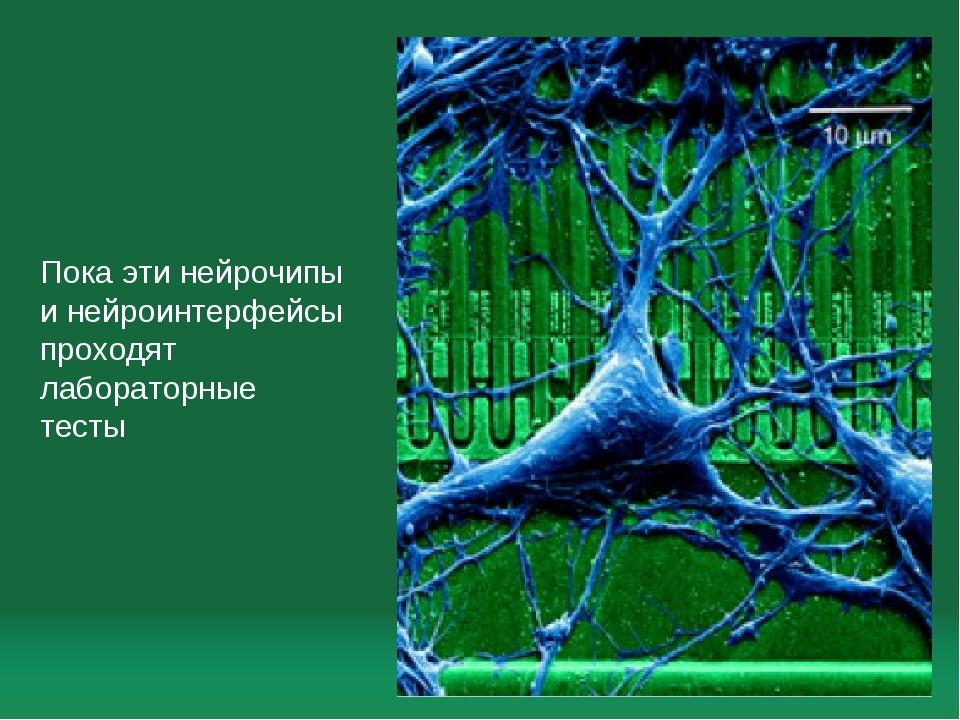 Пока эти нейрочипы и нейроинтерфейсы проходят лабораторные тесты