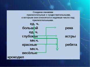 Соедини линиями прилагательные с существительными, к которым они относятся и