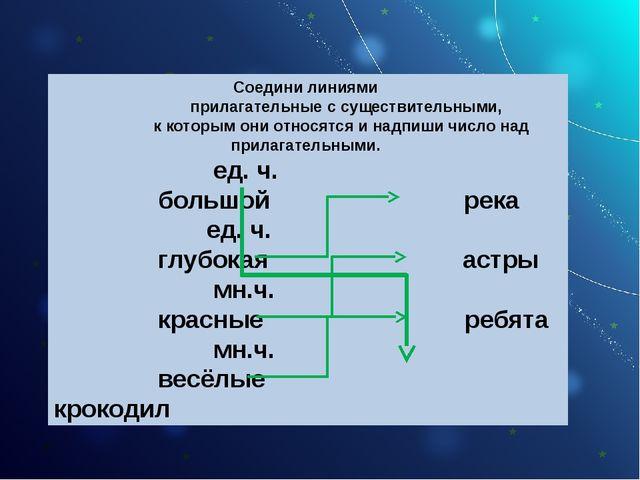 Соедини линиями прилагательные с существительными, к которым они относятся и...