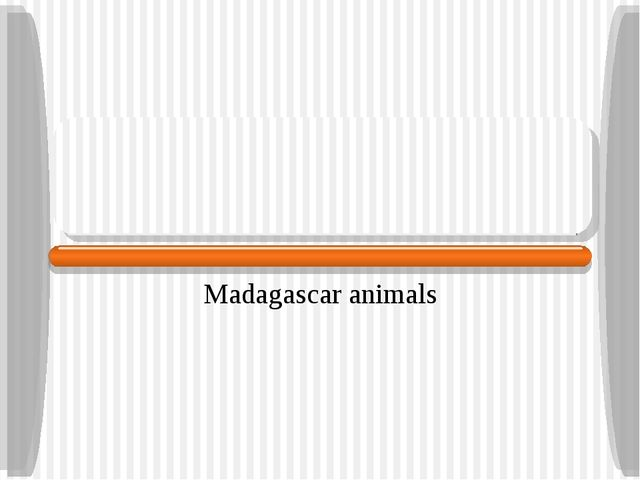 Madagascar animals Consulate of Madagascar Bangkok March 2006